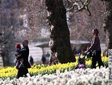 story.spring.gi.jpg