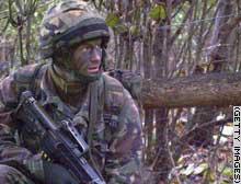 story.camouflage.gi.jpg